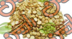 تولید نخودچی ممقان